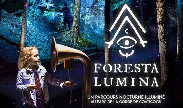 image-promo-foresta-lumina